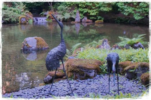 cranes-japanese-garden-portland-20-sept-2014