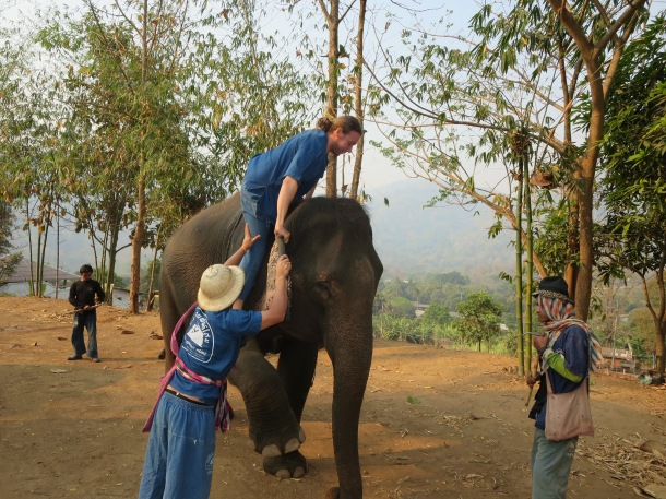 An elephant that offers a leg to hop on.