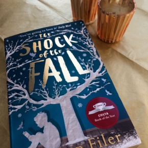 <em>The Shock Of The Fall</em> By Nathan Filer