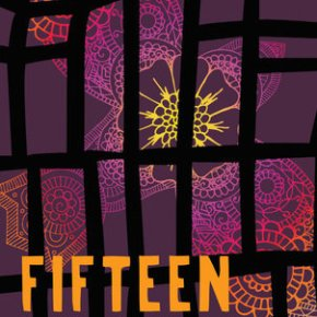YA Book Review: Fifteen Lanes by S.J. Laidlaw | I've Read This