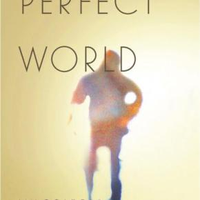 Book Review: 'Perfect World' By Ian Colford | I've Read This #ShiftYourPerspective