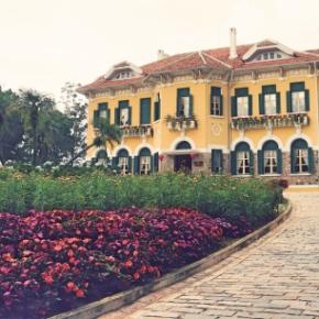 Vietnam: First Visit To Dalat | Lynn B. Walsh#Photography