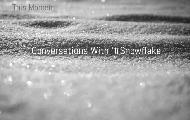 This Moment '#Snowflake' | Conversations With '#Snowflake': On Pen America's 'State Of Emergency' Series | This Moment | BL | Black Lion Journal | Black Lion