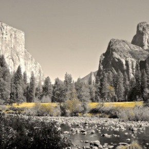 Homage To National Parks: Yosemite & Badlands | Lynn B. Walsh #Photography #Art