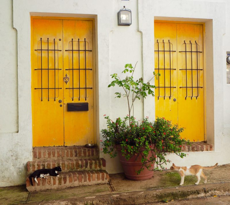 Letters from abroad: Puerto Rico and Old San Juan | Changing Pages #Travel #Photography | BL | Black Lion Journal | Black Lion