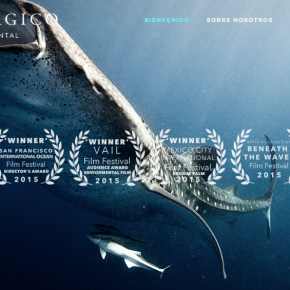 When You Protect Our Ocean Life, You Ultimately Protect Our Own Too — 'México Pelágico' Is A Documentary Working To Conserve & Give Awareness Of The Marine Life & Ecosystem In México
