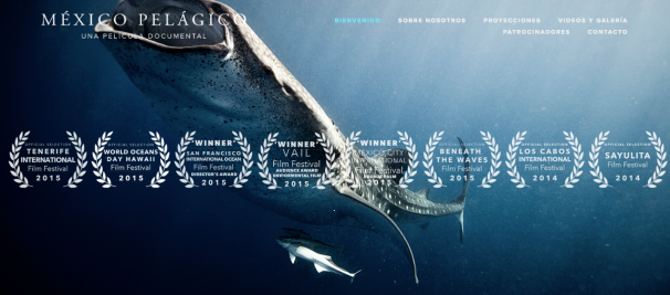When You Protect Our Ocean Life, You Ultimately Protect Our Own Too — 'México Pelágico' Is A Documentary Working To Conserve & Give Awareness Of The Marine Life & Ecosystem In México | BL | Black Lion Journal | Black Lion