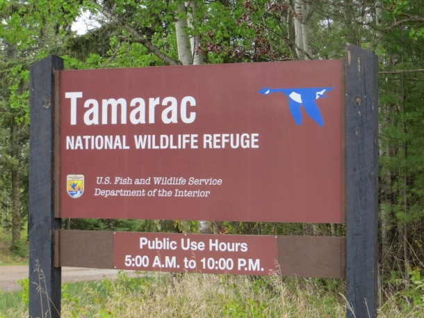 Tamarac National Wildlife Refuge