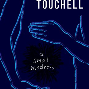 'A Small Madness' By Dianne Touchell | I've ReadThis