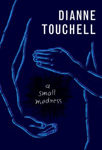 'A Small Madness' By Dianne Touchell | I've Read This