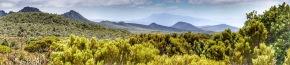 Tasmania – Hartz Mountains National Park | Lynn B.Walsh