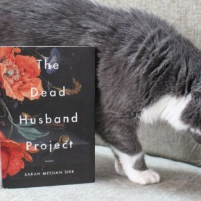 The Dead Husband Project By Sarah Meehan Sirk | I've Read This